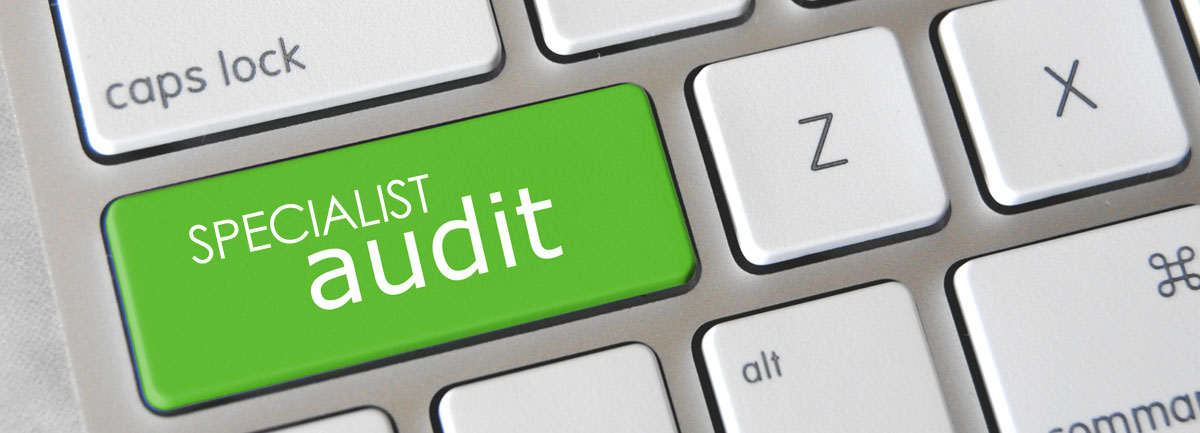 auditor independence and non-audit services a literature review